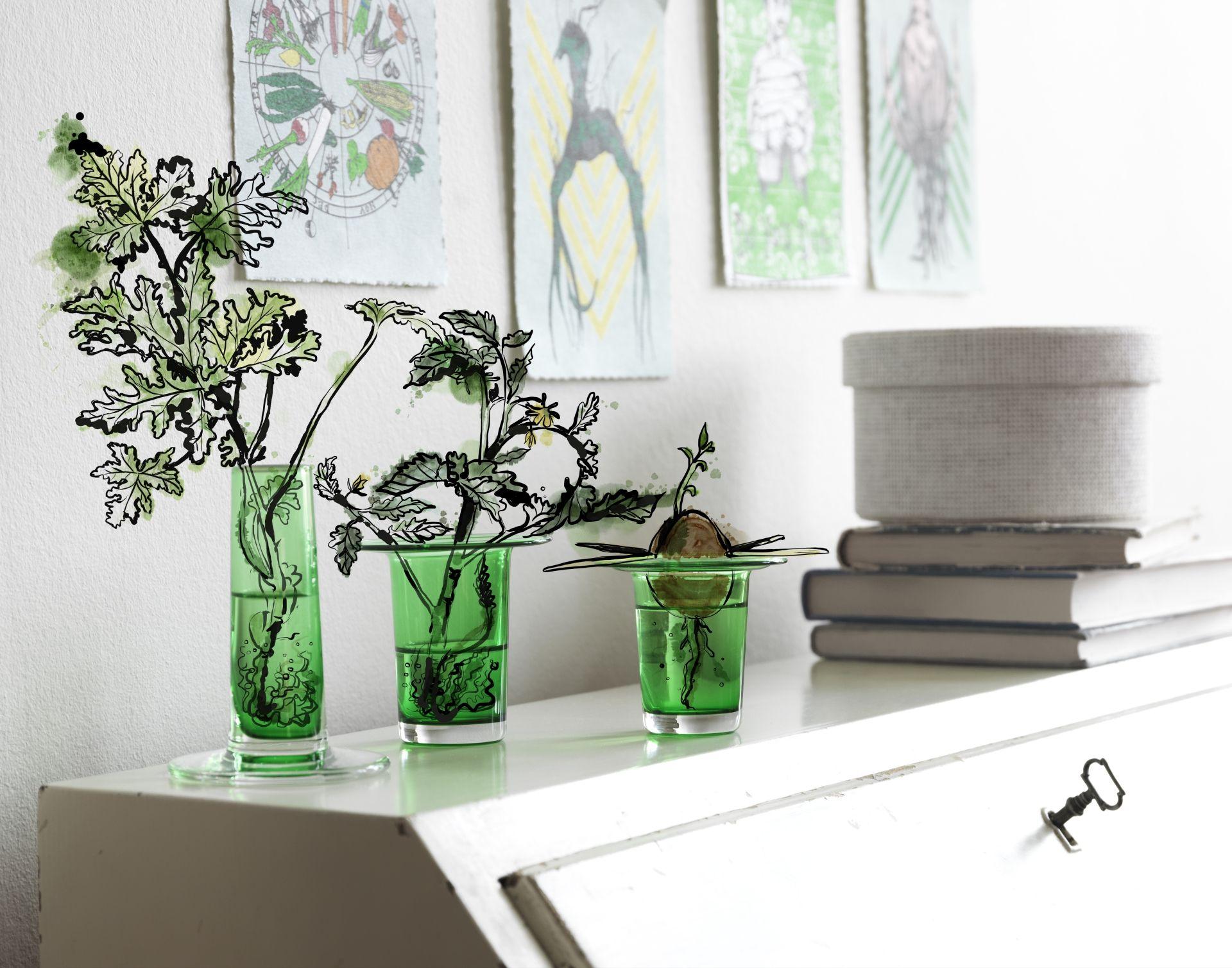 Le Ikea Blume lascia che le talee mettano le radici nell acqua prima di piantarle