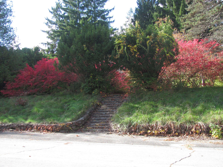 Foreman Gardens