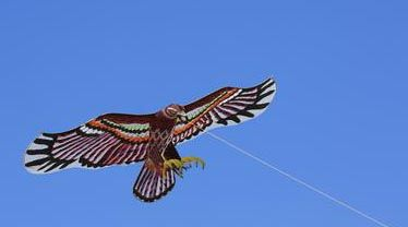 buy Chinese kite, Chinese handicrafts