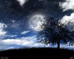 Moon scape