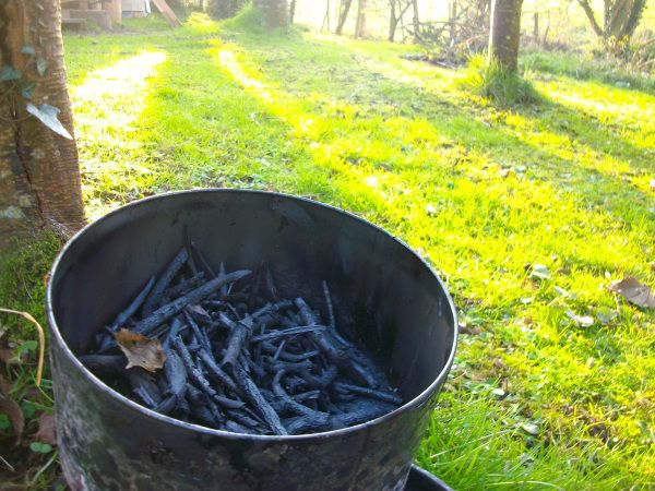 In my previous post we looked at What is Biochar and why you should be interested. In this post we will specifically look at how to make it at home for your home growing.. I was a complete novice g…