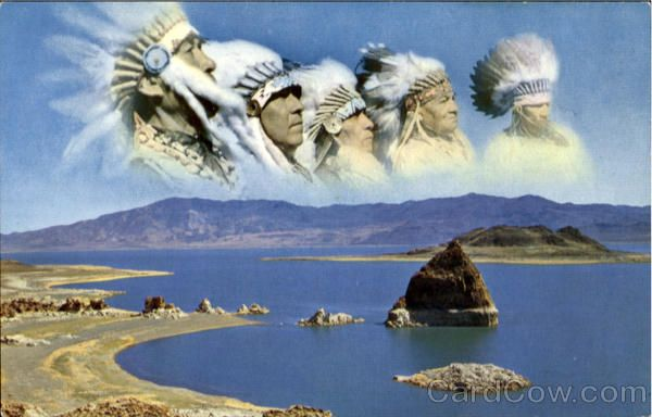 Pyramid Lake   funny raccoon pictures   Sierra nevada ...