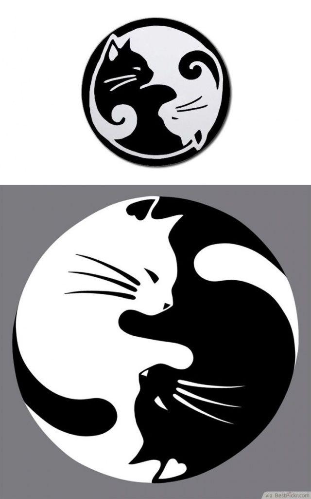 Dessin tatouage chat blanc et noir femme forme yin et yang - Chat dessin noir et blanc ...