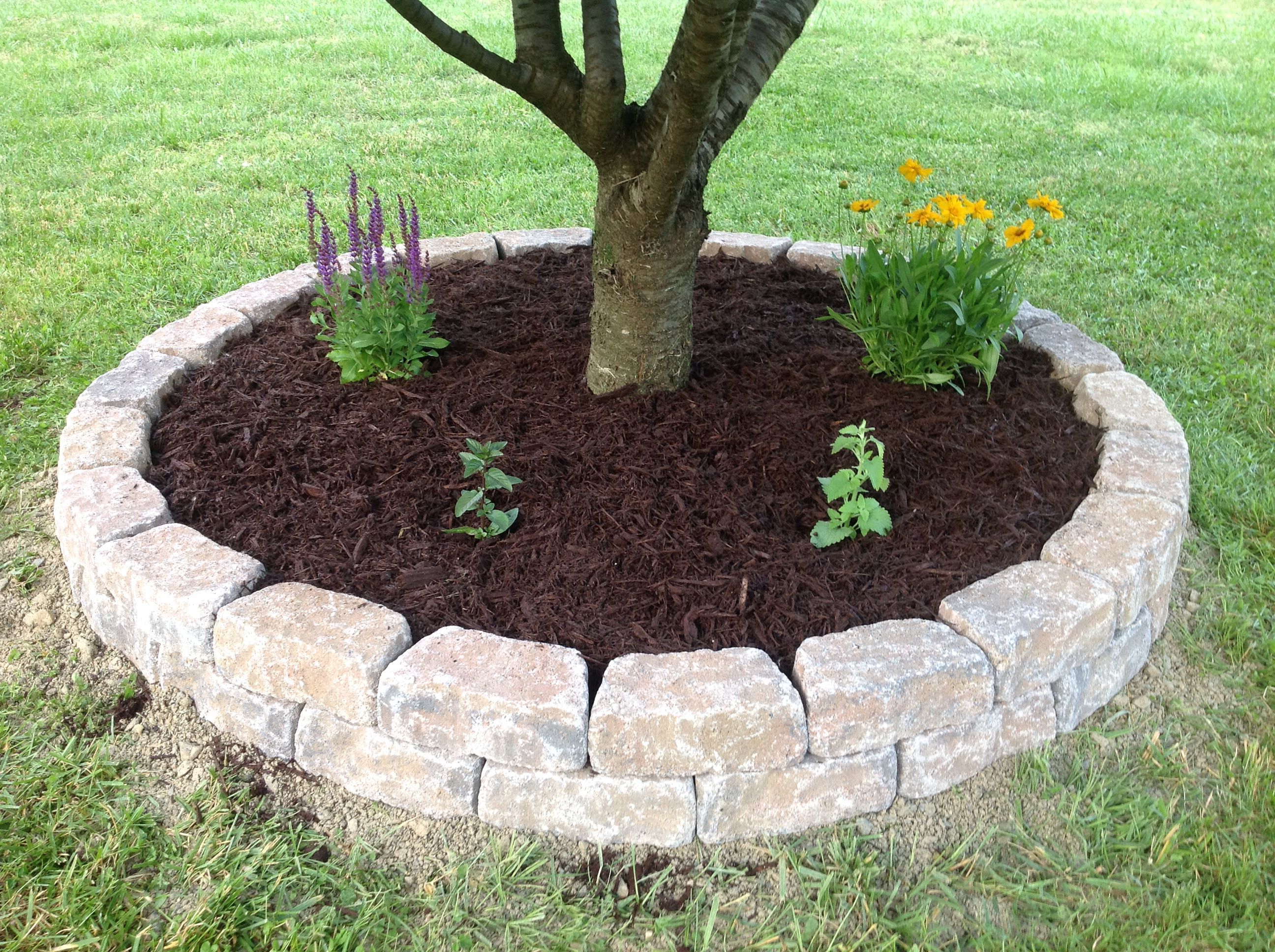 Raised Flower Bed- wall blocks, paver base, construction adhesive then add potting soil, plants & mulch.