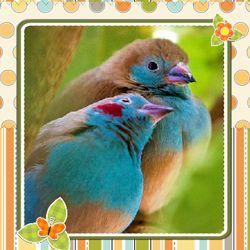 Te mando un fuerte abrazo para ti. http://dostarjetas.com/tarjetas-de-abrazos/un-fuerte-abrazo-704.html