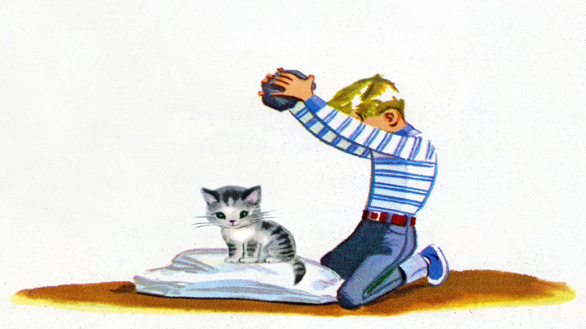 Cat Wallpaper [1920x1080] | Reddit HD Wallpapers | Cat wallpaper, Wallpaper, Cats
