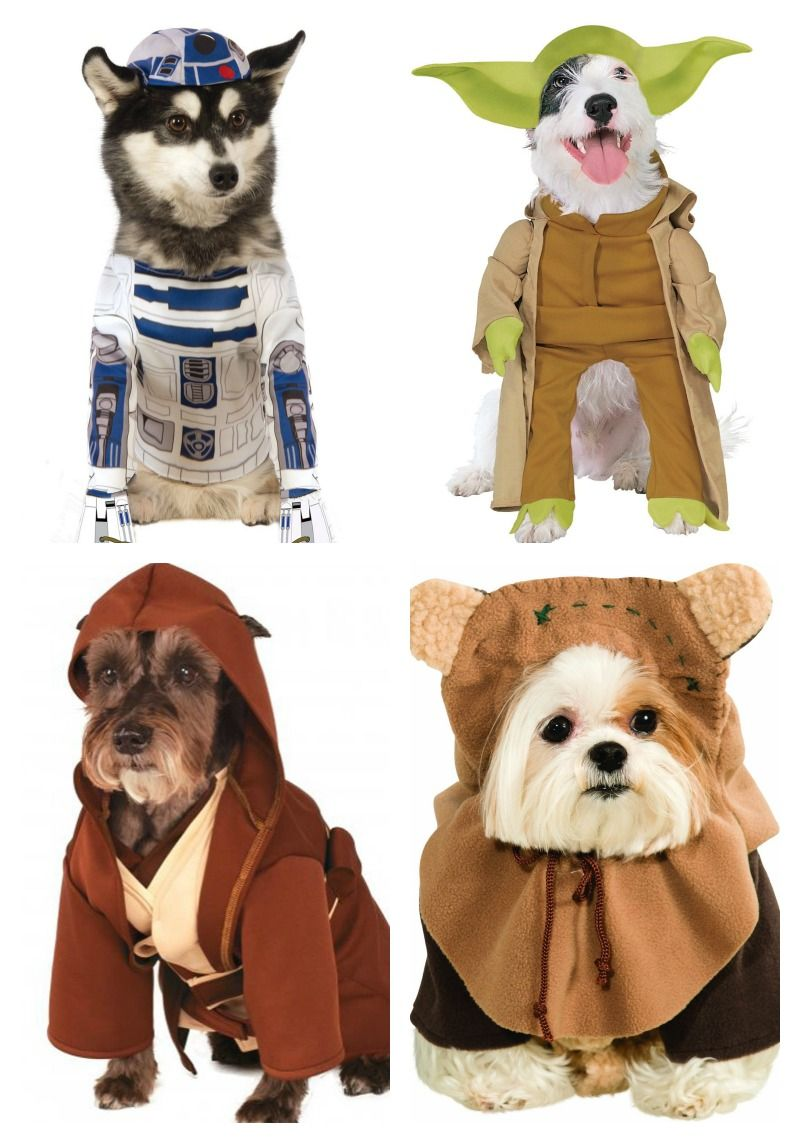 Star Wars Halloween Pet Costumes Looking For An Out Of This World