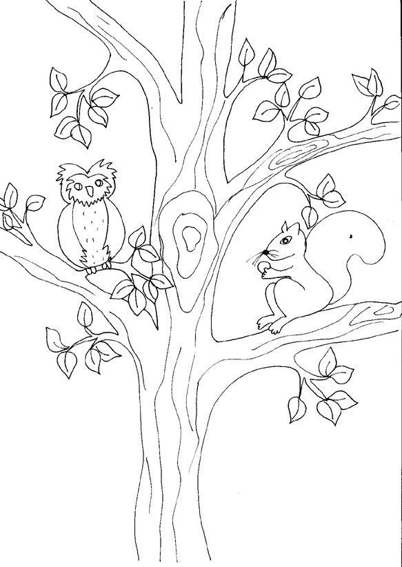 coloriage de l 39 cureuil et du hibou ecureuils pinterest coloriage de cureuil et coloriage. Black Bedroom Furniture Sets. Home Design Ideas