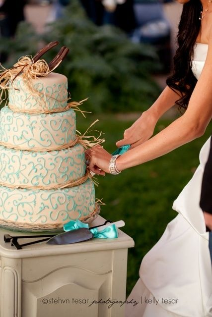 Country Wedding Cake, minus the horseshoe. Maybe flowers instead of raffia? I just like the swirls of blue  :)