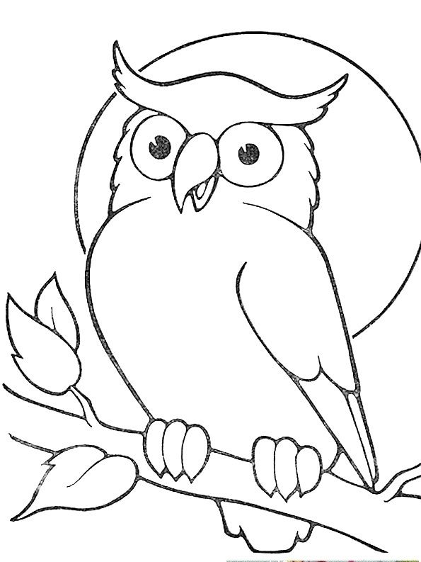Outline owl sitting on branch tattoo sample tattoos - Outline gufo stampabile ...
