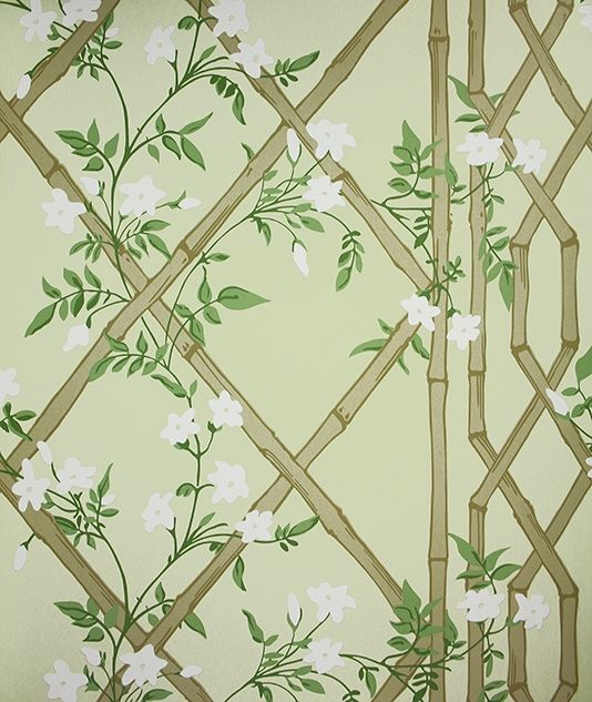 Trellis Background Wallpaper: Jasmine Lattice Wallpaper