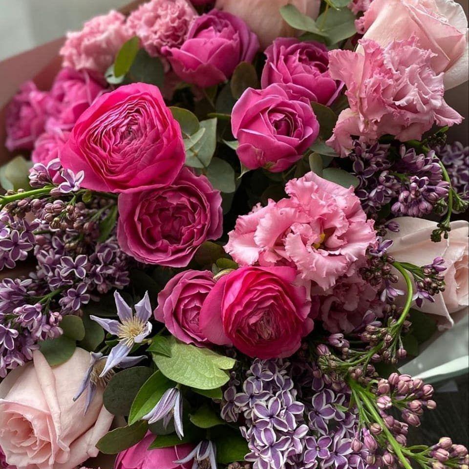 جمعة مباركة Flowers Plants Rose
