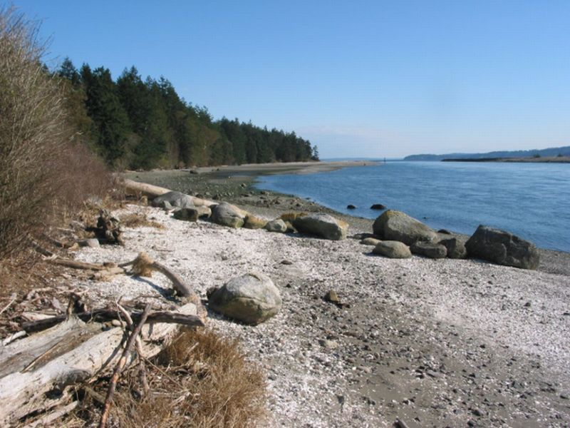 PORT TOWNSEND SHIP CANAL/PORTAGE CANAL CLAM AND OYSTER BEACH