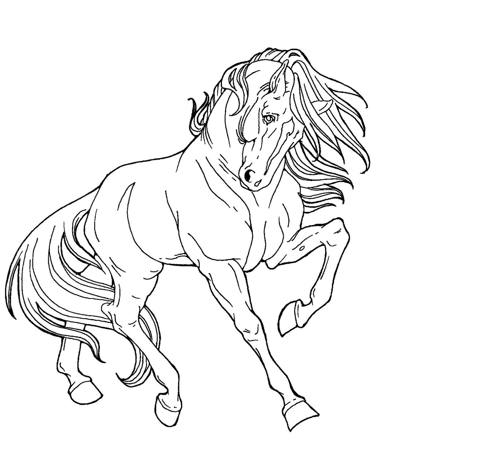 Free Line Art Proud Horse By Applehunter On Deviantart Horse Drawings Horse Coloring Pages Animal Drawings [ 1584 x 1600 Pixel ]