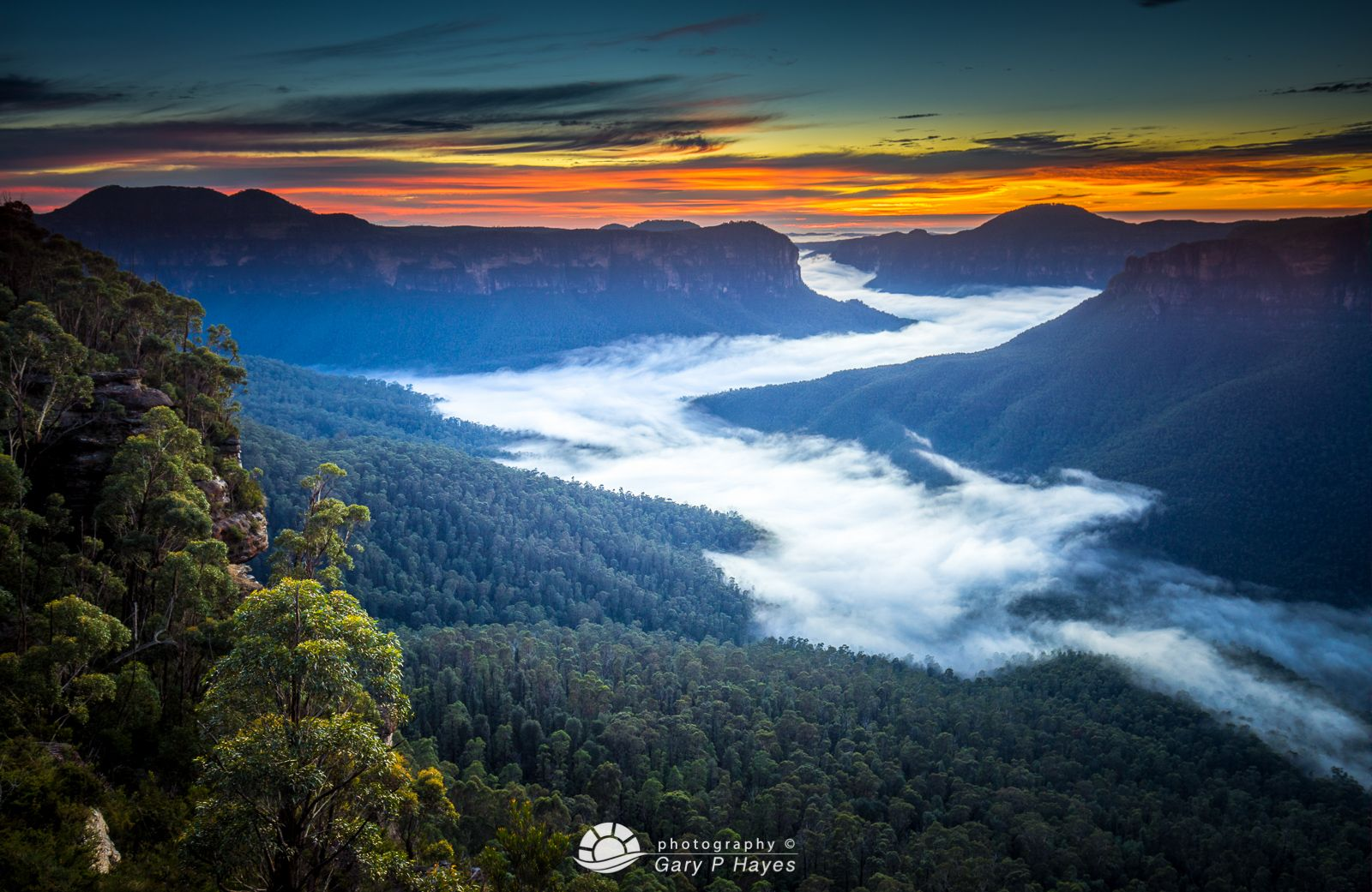 A Landscape Photographers Guide To Visiting The Blue Mountains Australia Landscape Photographers Blue Mountains Australia The Blue Mountains