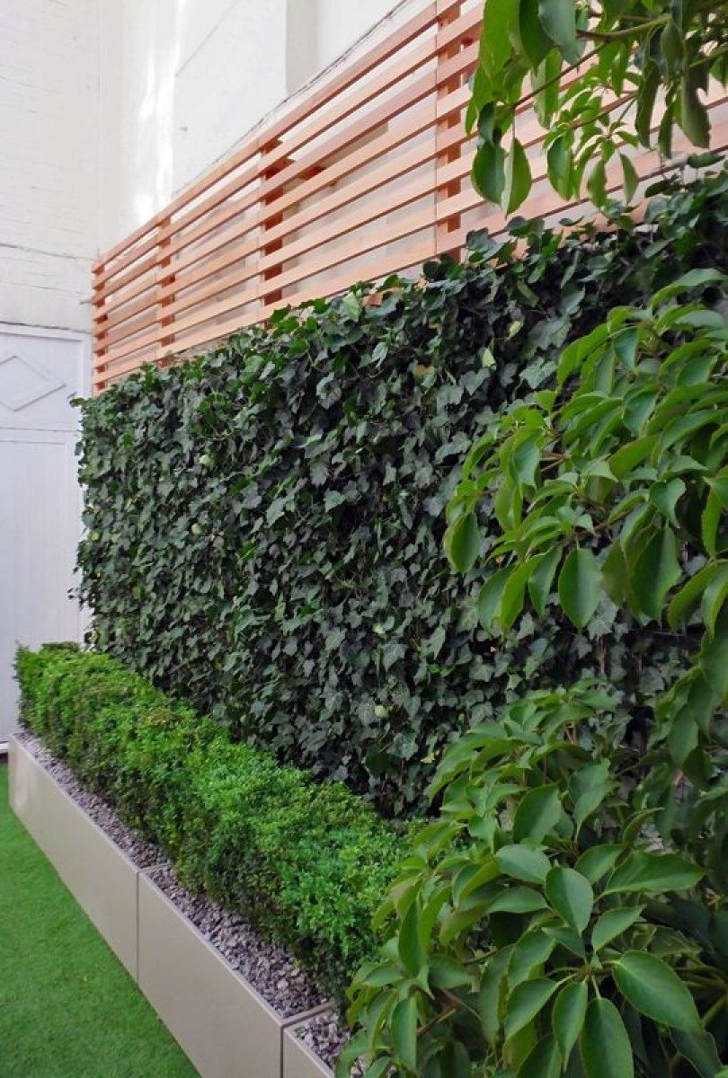 50 im genes de los jardines verticales m s impactantes for Imagenes de jardines verticales
