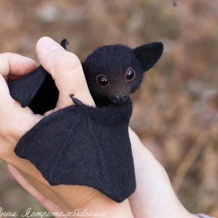 Black If only I could hold this is in my sleep so cute