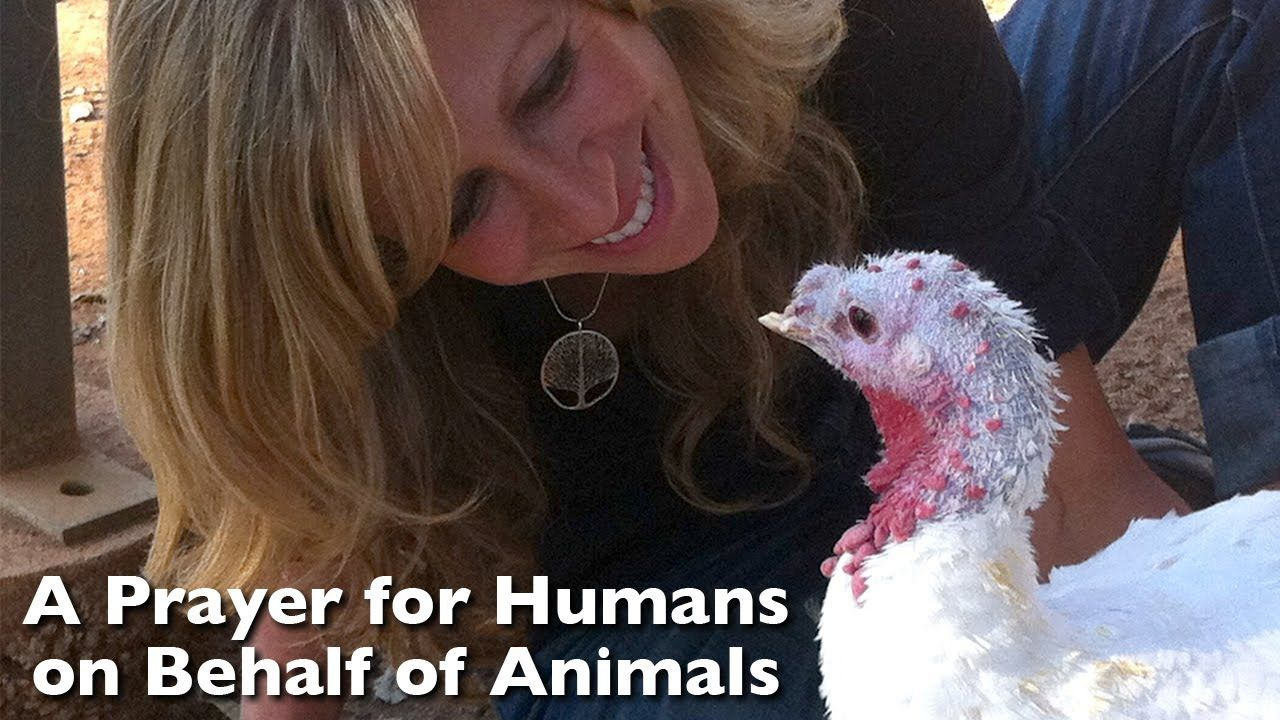 A Prayer for Humans on Behalf of Animals. thank you CPG