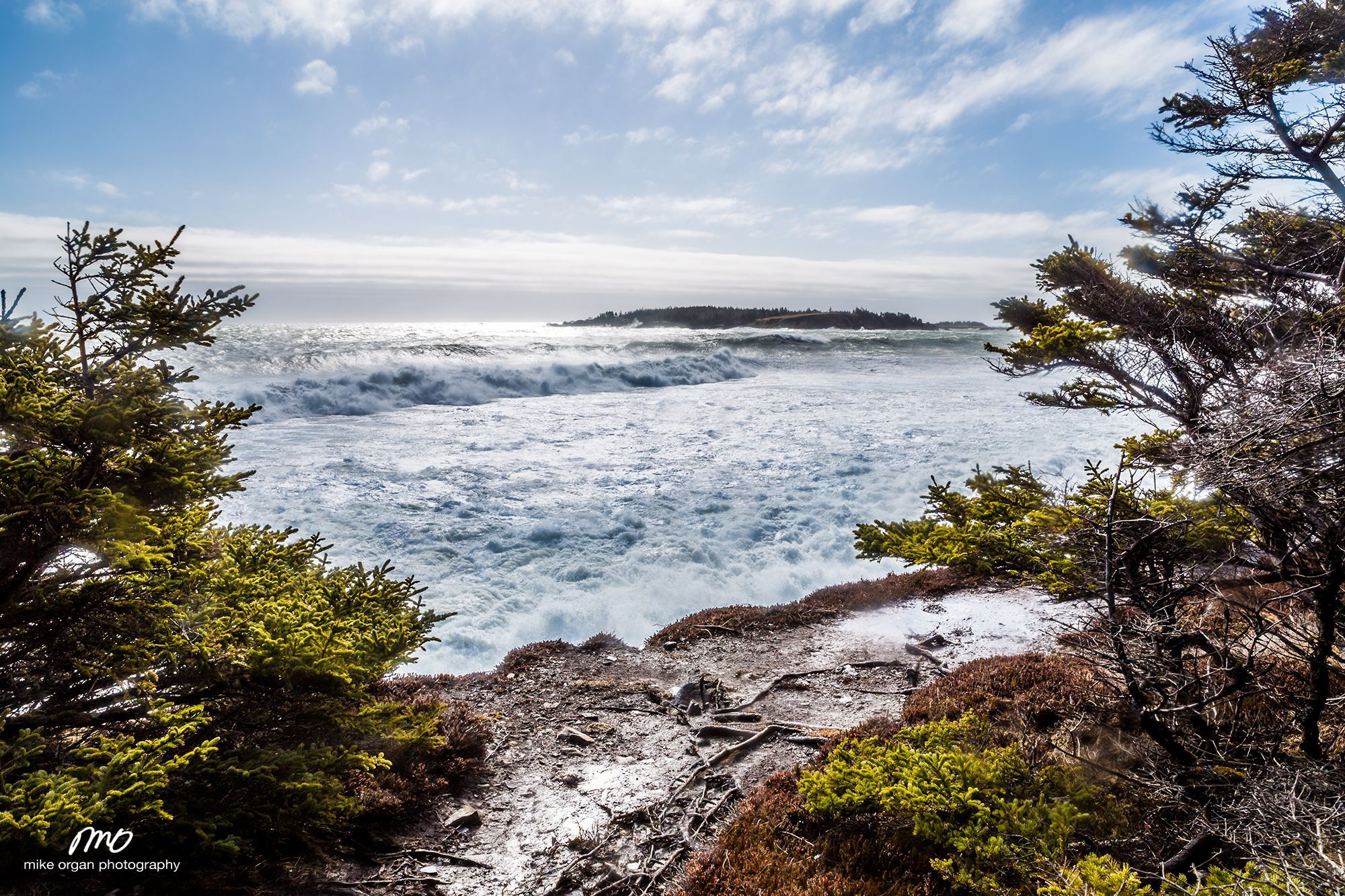 The power of the ocean shook the cliff like thunder under my feet. An unnerving feeling that you can't help but smile about. Gaff Point, Nova Scotia.