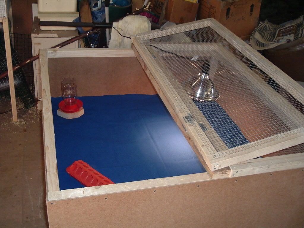 I like this brooder pretty big and two doors for easy access. Not ...