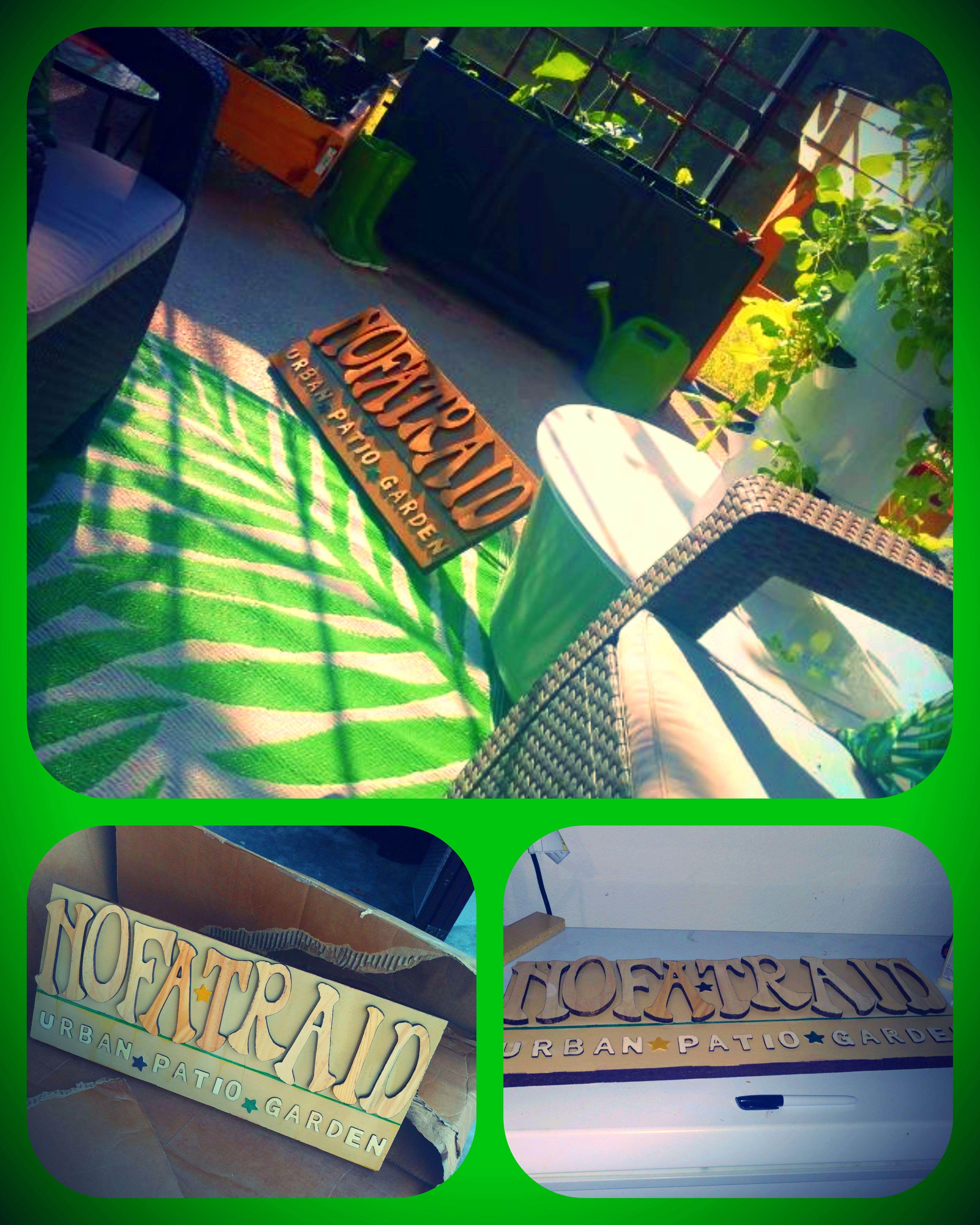 Nofatraid's Urban Patio Garden