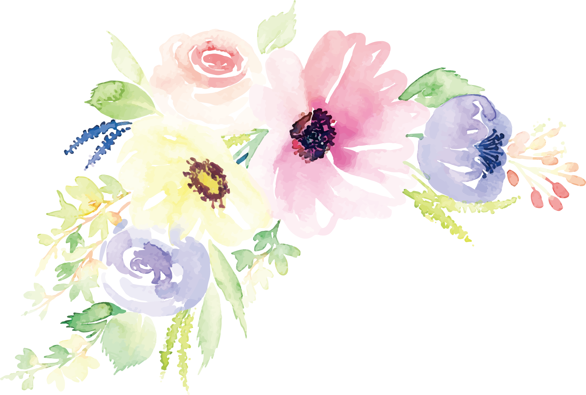 Floral Design Watercolor Painting Flower Illustration