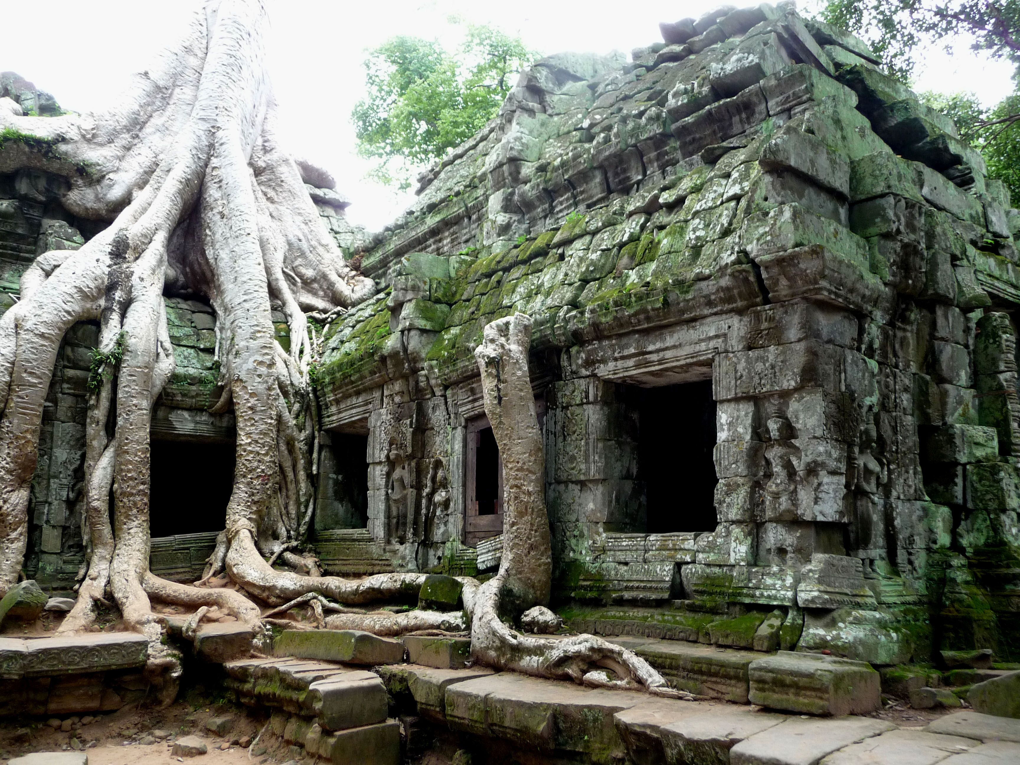 Overgrown Abandoned Pinterest Angkor Angkor Wat And Abandoned