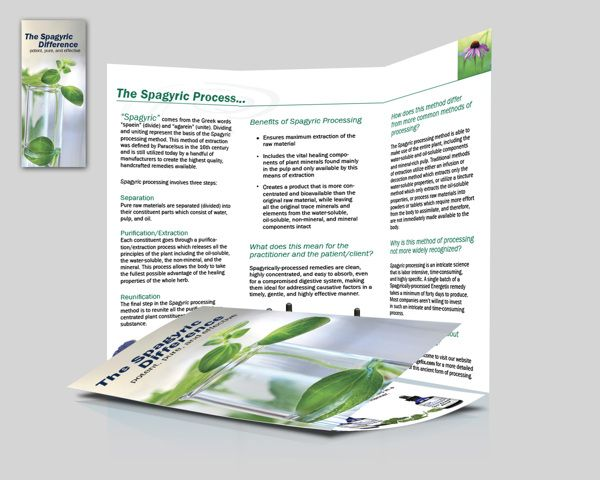 Homeopathy Brochure Design For Energetix By Creative Field Media