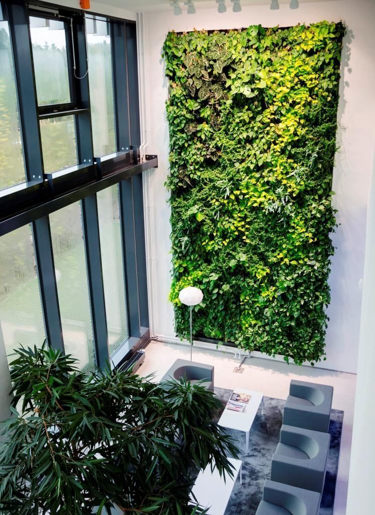 Nicht Nur Baume Wachsen Zu Respektablen Hohen Fassaden Wie Auch Innenwande B Auch Bau In 2020 Bepflanzung Fassade Vertikaler Garten