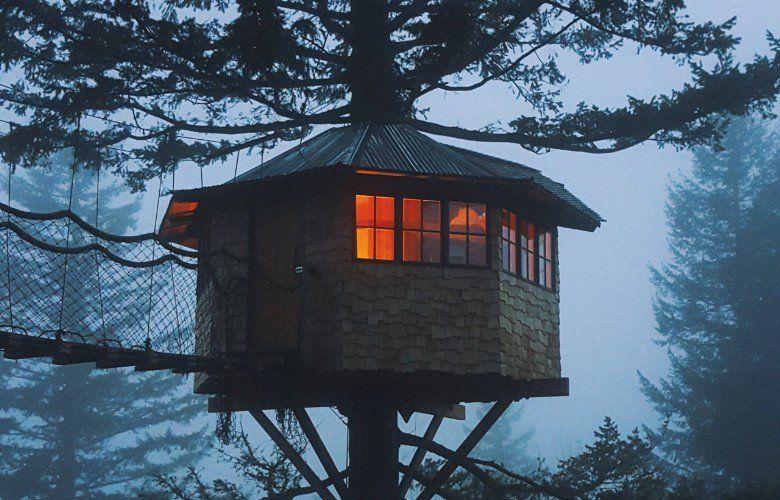Vivre dans une cabane dans les arbres ? Il l'a fait !