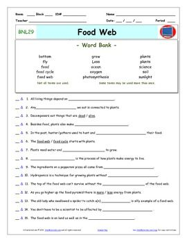 Differentiated Video Worksheet, Quiz & Ans. for Bill Nye - Food Web ...