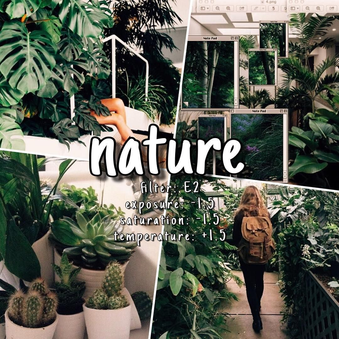 E2 Filter Perfect For A Nature Plant Feed Take Pics That Are Green And Light Cream Vsco V Vsco Filter Vsco Filter Instagram Best Vsco Filters