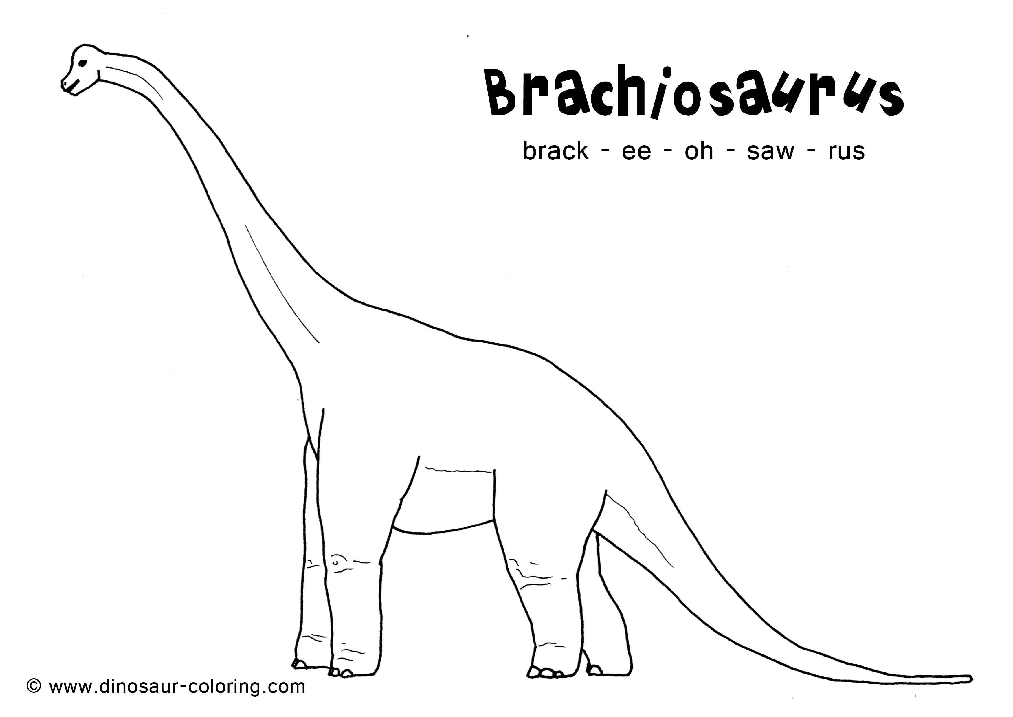 Dinosaur colouring pictures - 17 Best Images About Daverende Dino S Kleurplaten On