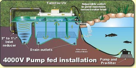Basic filter types fish pond technic pond water for Koi pond pool filter
