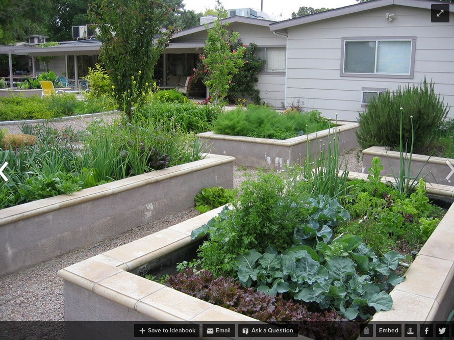 Permanent concrete raised beds. Cinder block garden
