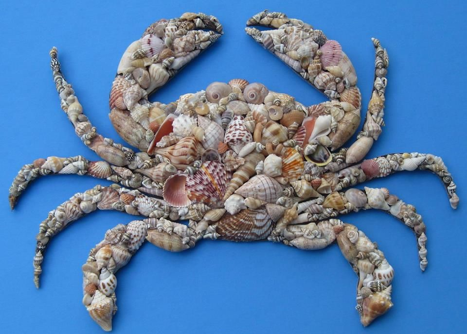 Pin by cindy montross on MOANA & THE SEA Moana, Crab, Sea