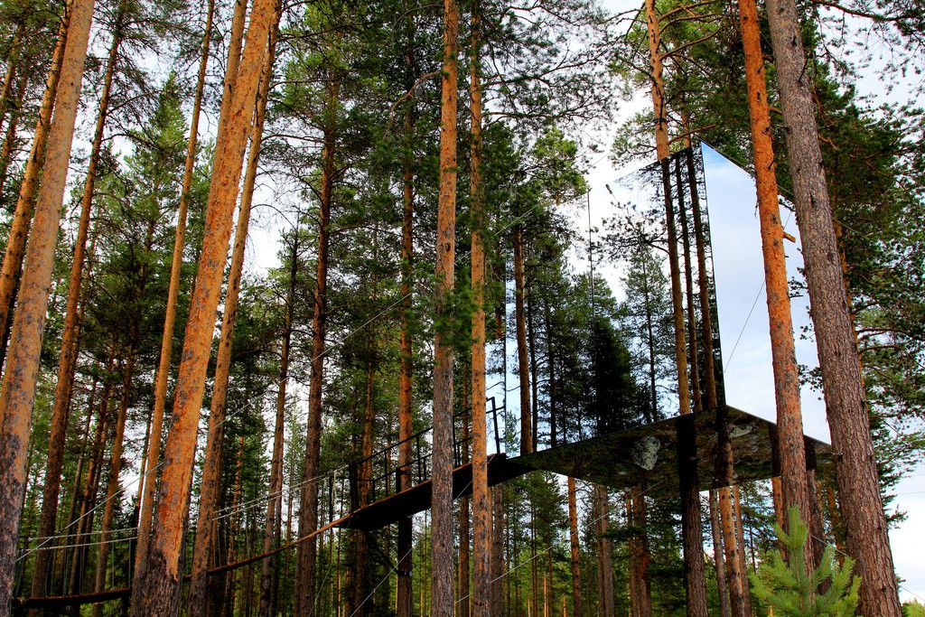 mirror tree house