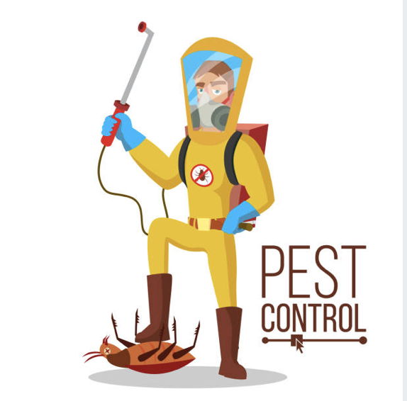 Singhz Has Been With Pride Providing Domestic And Commercial Pest Control Services To Homes And Offices Inside Brisbane And Regiona Termite Control Pest Control