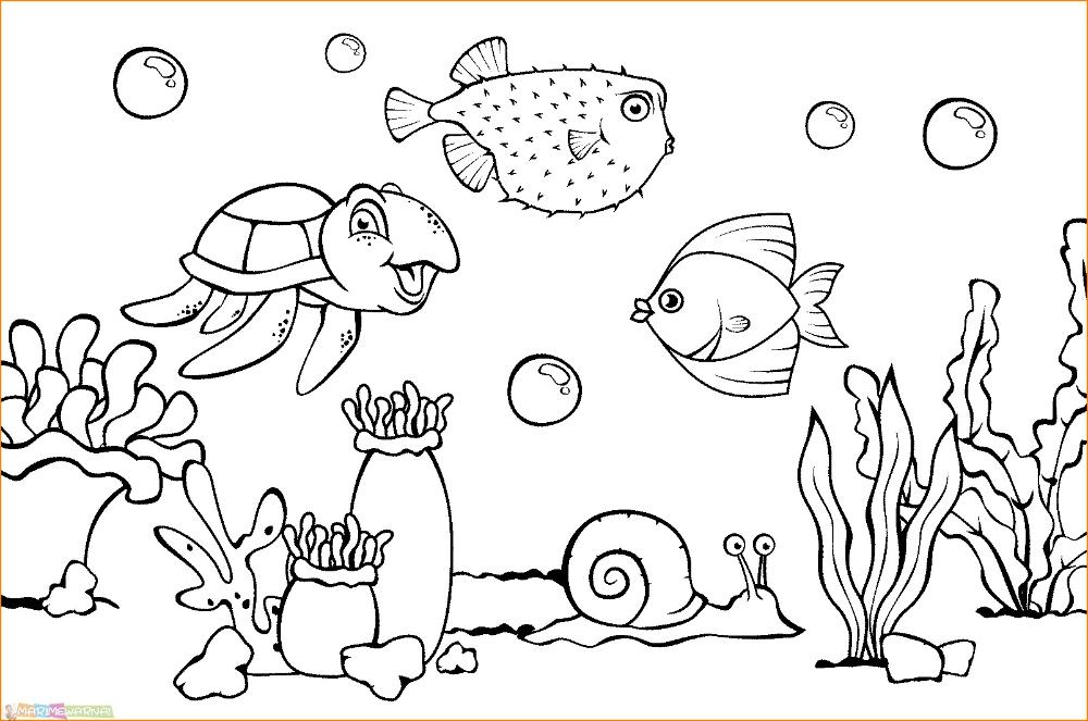 Mewarnai Gambar Pemandangan Alam Laut Pemandangan Kehidupan Laut Gambar