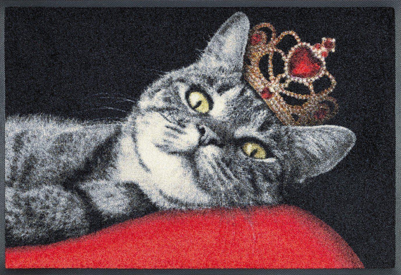 wash + dry 078760 paillasson royal cat, 50 x 75 cm: amazon.fr