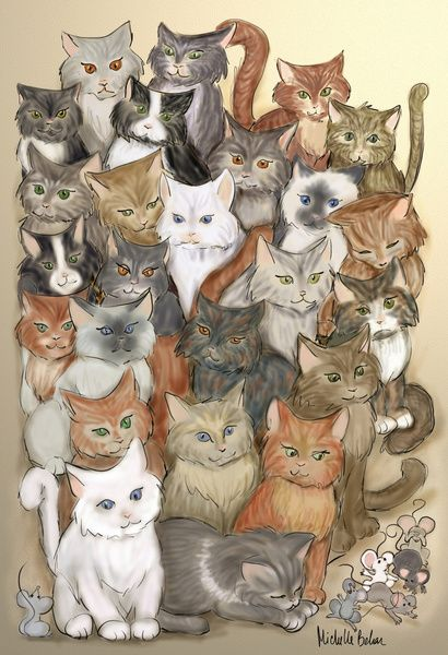 1000 cats