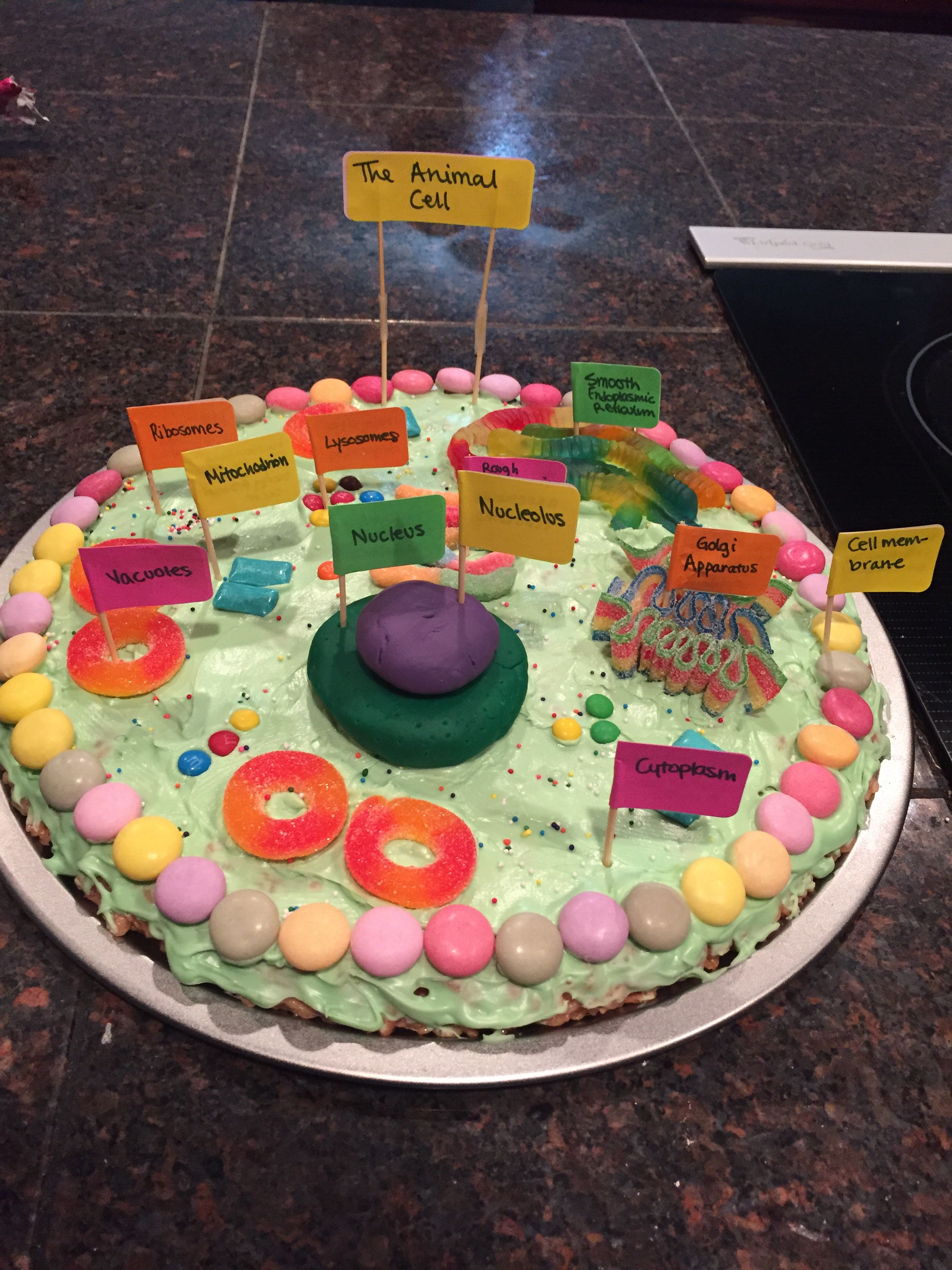 Bestb Animal Cell Made Out Of Cake