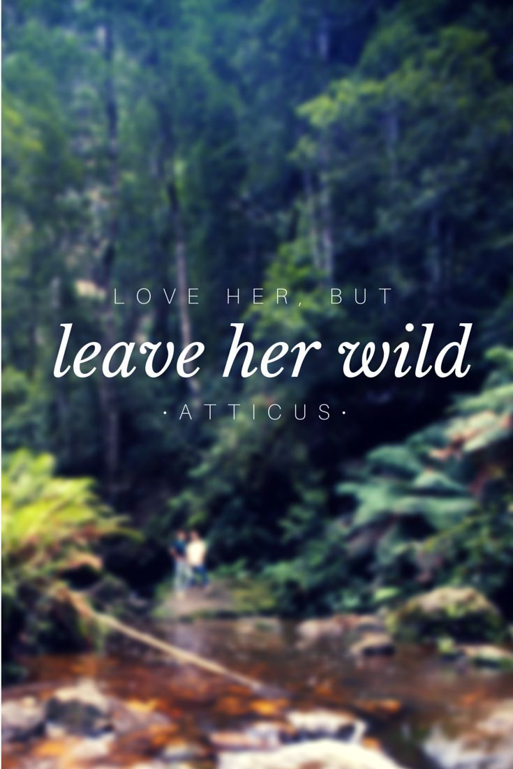 """Wild Love Quotes: """"Love Her, But Leave Her Wild."""" Atticus"""