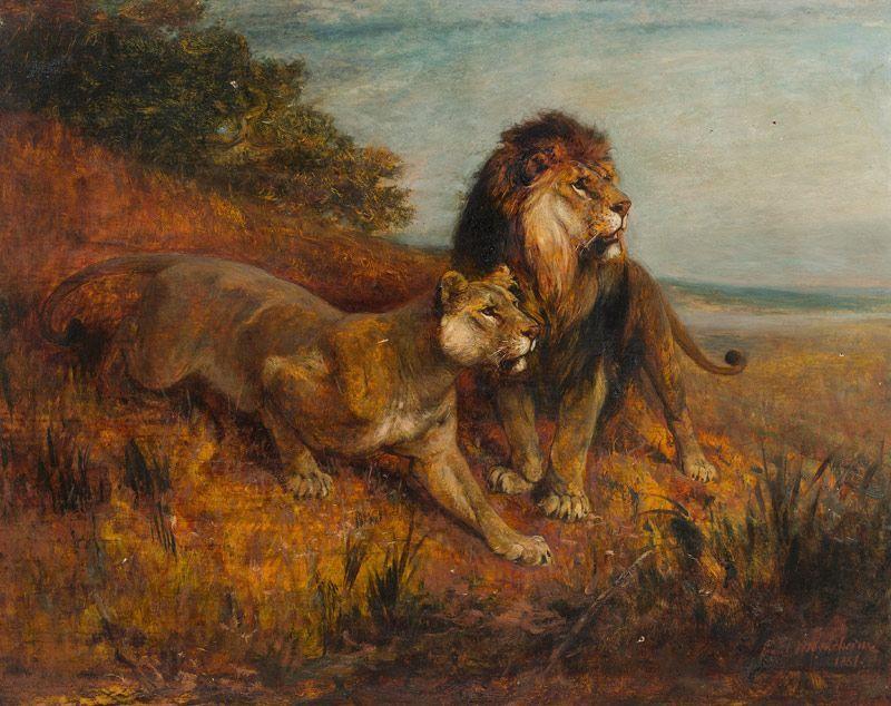 Paul Friedrich Meyerheim (German, 1842-1915) - Lions, oil on panel, 56 x 72 cm.