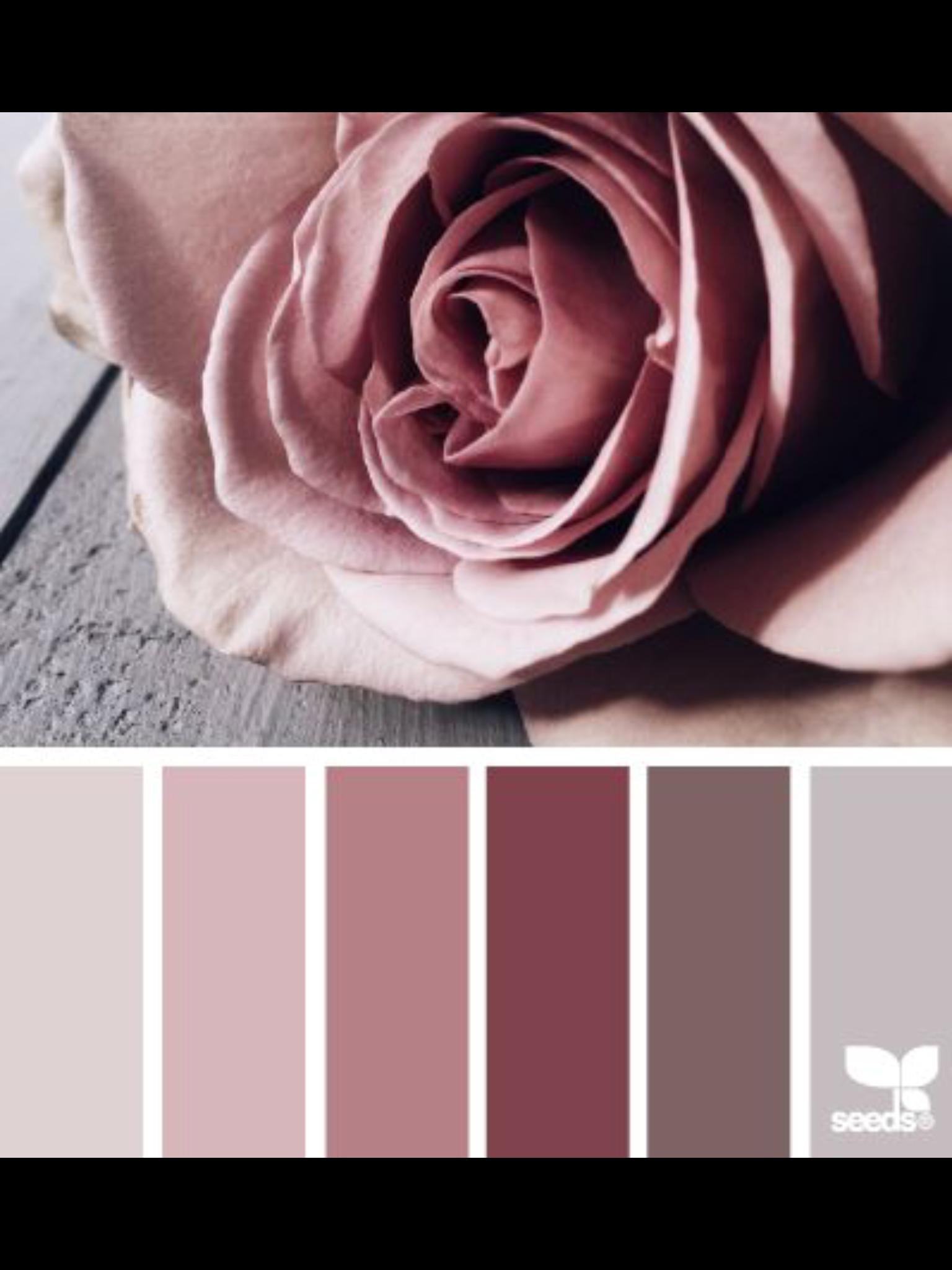 Sammlung, Farben, Magazin, Rund Ums Haus, Blumen, Runde, Farbschemata, Farb  Kombis, Schlafzimmer Farbpaletten