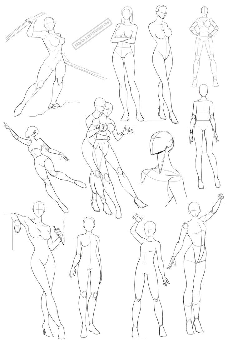 Female Anatomy 2 By Precia T On Deviantart Drawing References