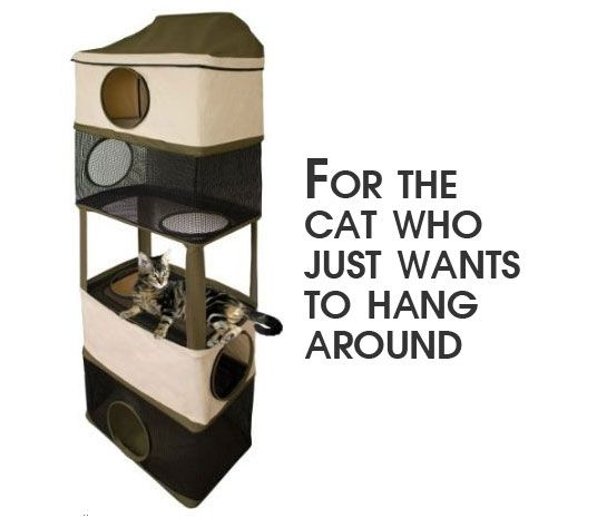 Here S An Economical And E Saving Door Mounted Cat Tree Perfect For Giving Your A Place To Hang Out