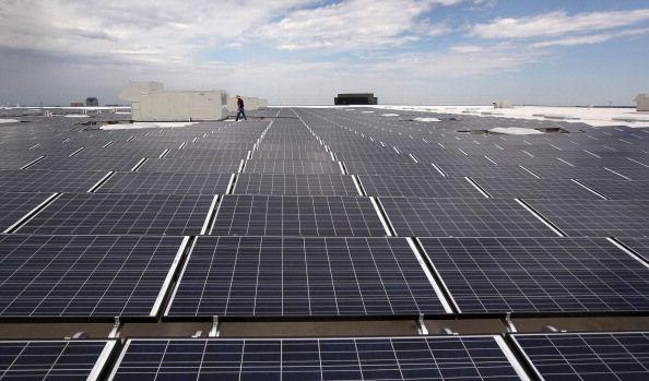 Emerging Solar Plants Scorch Birds In Mid Air Solar Panels Solar Solar Pv