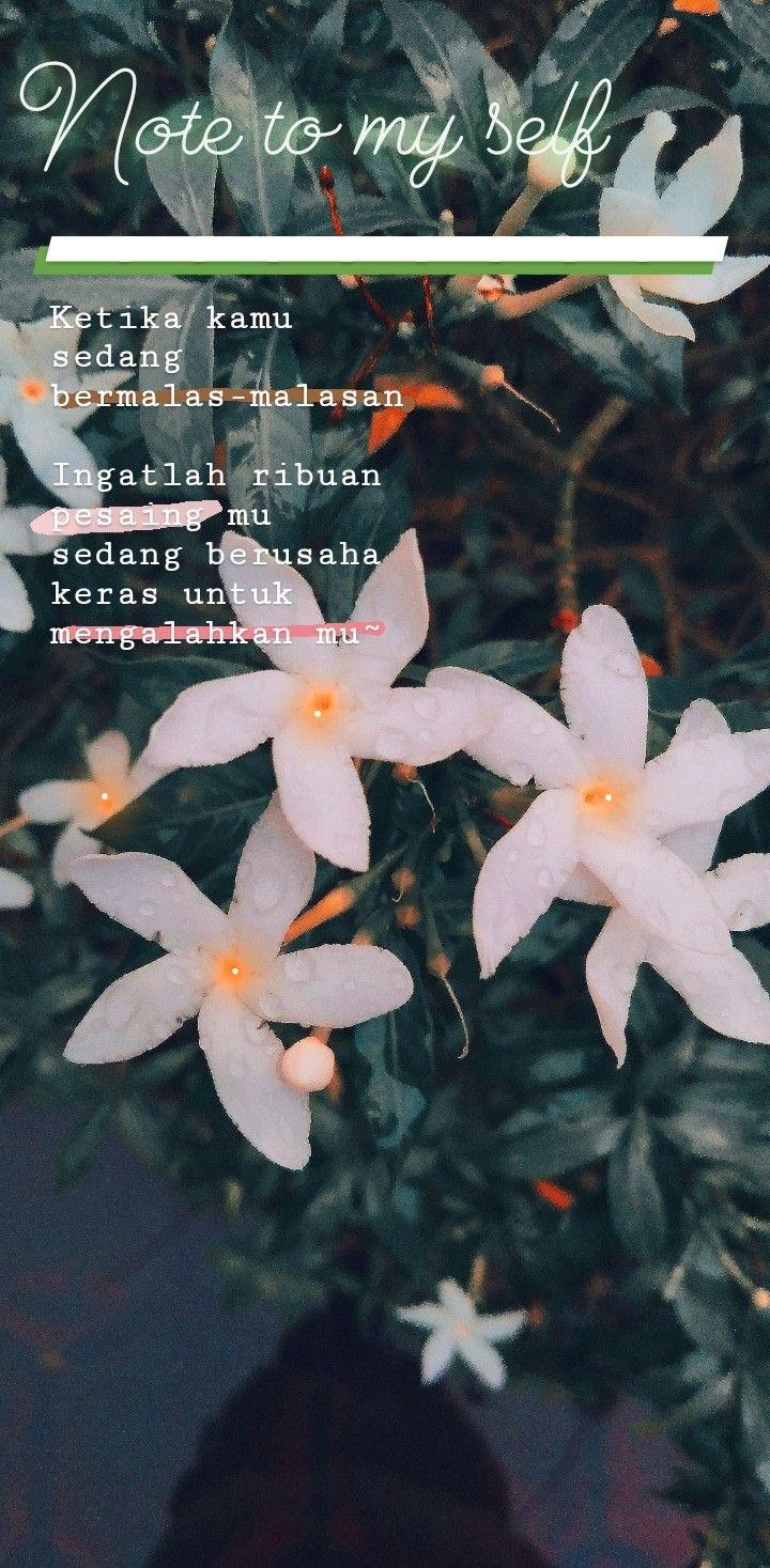 Dirikuuuu....  aku#indonesia#vsco#vscox#lightroom#muslimah#wanita#hijab#muslim#qoute#kata#bijak#senja#kutipan#rindu#kangen#pagi#malam#indah#like#bucin#lfl#love aku#indonesia#vsco#vscox#lightroom#muslimah#wanita#hijab#muslim#qoute#kata#bijak#senja#kutipan#rindu#kangen#pagi#malam#indah#like#bucin#lfl#love#bunga#cantik Kata Bijak Wanita kata.kerja.site