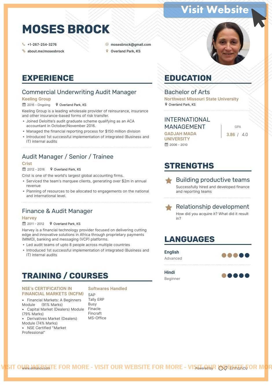 Auditor resume samples 2020 auditor resume templates